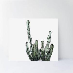 scandi-cactus-art